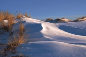 "Image ""Sylt im Winter"" on Page ""Sylt im Winter"""