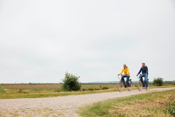 E-Bike-Tour durch Tinnumer Wiesen